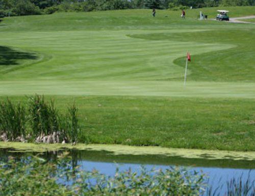 2019 Wheatfield Cup Golf Tournament